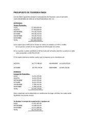PRESUPUESTO DE TESORERIA EJERCICIO.doc